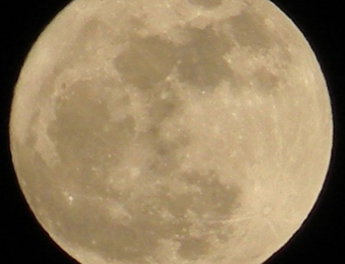 Super-moon at the Cottages